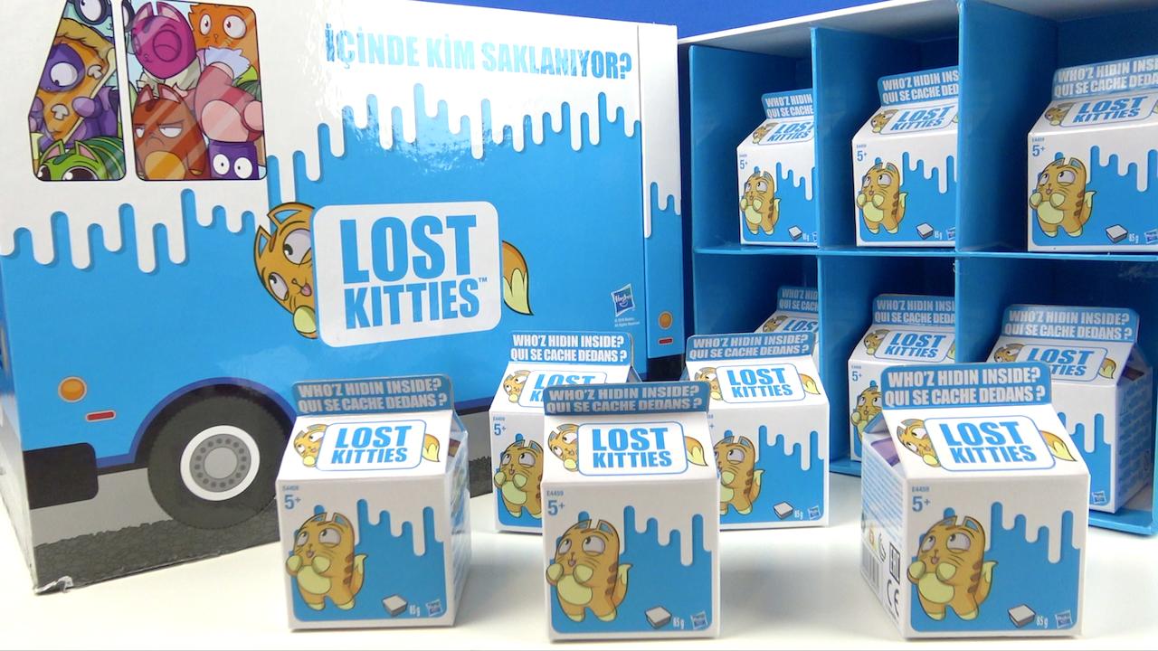 Lost Kitties Çılgın afacan kediler sürpriz kutu içinde Yaramaz Kedi kim ?